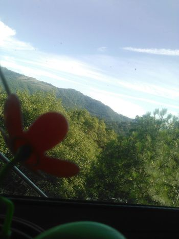 Fragment Outside Looking In Trapped Solar Technology Is The End Fake Flowers Mountain Window Inside Looking Out Sky