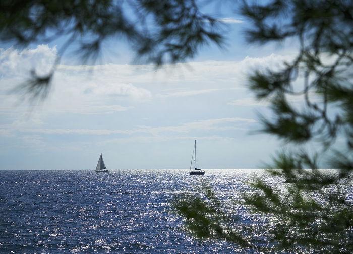Sailboats on sea against sky