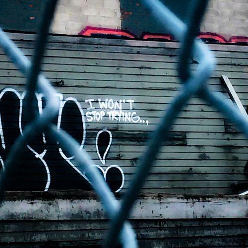 i won't stop trying. EVER. Outdoors Graffiti NYC Street Brooklyngraffiti Brooklyn Kings County Gate Gate View I Won't Stop Trying Life Qoute Advice