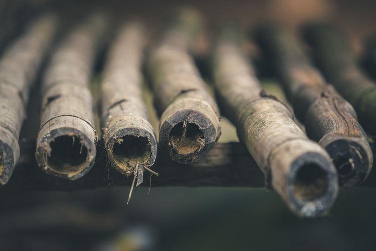 Close-up of bamboo part