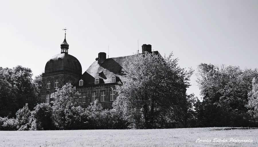Schloss Havestadt History Outdoors Architecture Politics And Government No People Day Sky Built Structure Fotooftheday Photography Bnw_magazine Bnw_lover Bnwlovers Bnw_of_our_world Bnw_shot Castle Park Close-up Eyeemphotography EyeEm Best Shots - Black + White Eyem Gallery Eyem Best Shots Tree Architecture