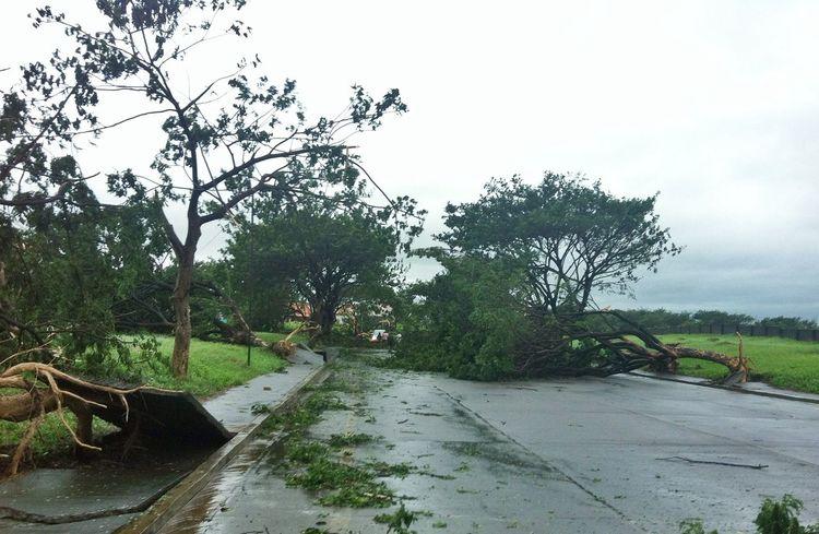 Typhoon aftermath IPSStory