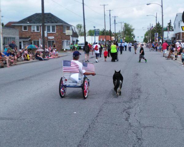 Parade Man Dog Paradeday People Walk Riding