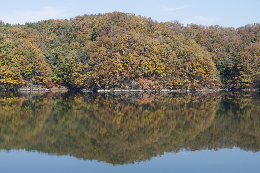 autumn landscape of Busodamak, a beautiful lake located in Okcheon, Chungbuk, South Korea Autumn Autumn Reflections Autumn Leaves Busodamak Okcheon Autumn Beauty In Nature Day Growth Lake Lake In Autumn Lake In The Morning Lake Reflection Morning Lake Mountain Nature No People Outdoors Reflection Scenics Sky Tranquil Scene Tranquility Tree Water Waterfront