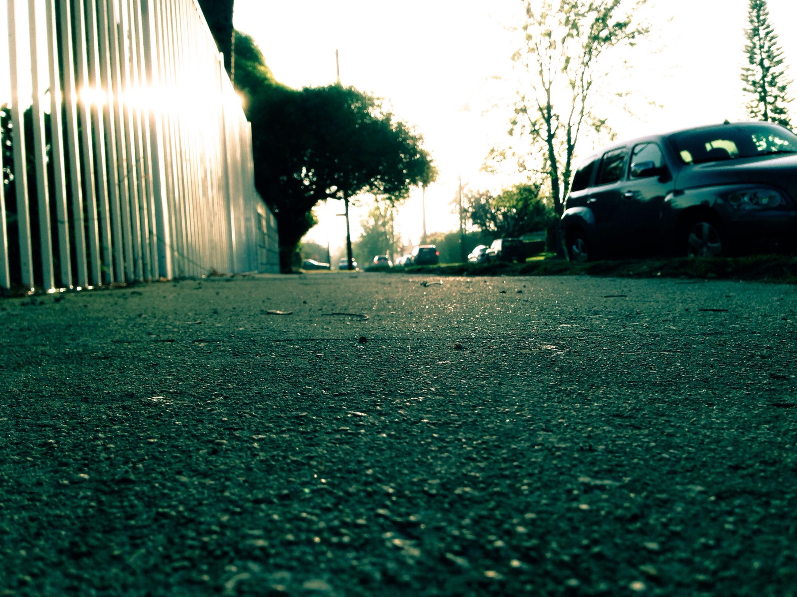 the way forward, transportation, surface level, road, street, asphalt, diminishing perspective, vanishing point, road marking, tree, sunlight, sky, car, empty, sunset, empty road, built structure, land vehicle, outdoors, clear sky