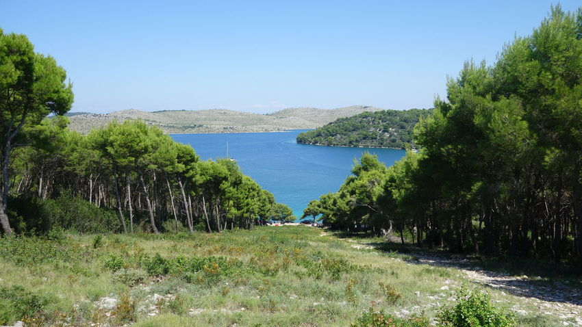 Adventure Adventure Time Amazing Place Beautiful Nature Beauty In Nature Blue Sky Boat Ride Croatia Croatia ♡ Excursion Exploring Goodlife Holiday Kornati Kornati Islads Kornati Island Nature Nature Photography Nature_collection Shadows & Lights Sunny Day Taking Photos Taking Pictures UNESCO World Heritage Site Vacation