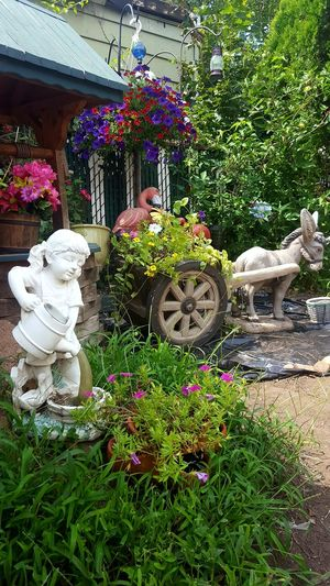 Day Plant Nature Freshness Outdoors Flower Garden Sculpture Statue Decoration Backgrounds Donky