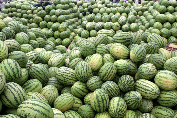 Food And Drink Healthy Eating Food Freshness Green Color Large Group Of Objects Abundance Wellbeing Vegetable No People Full Frame Agriculture Retail  Day Fruit Backgrounds Heap Market Harvesting Organic Outdoors Farmer's Market Watermelon Street Market Groceries