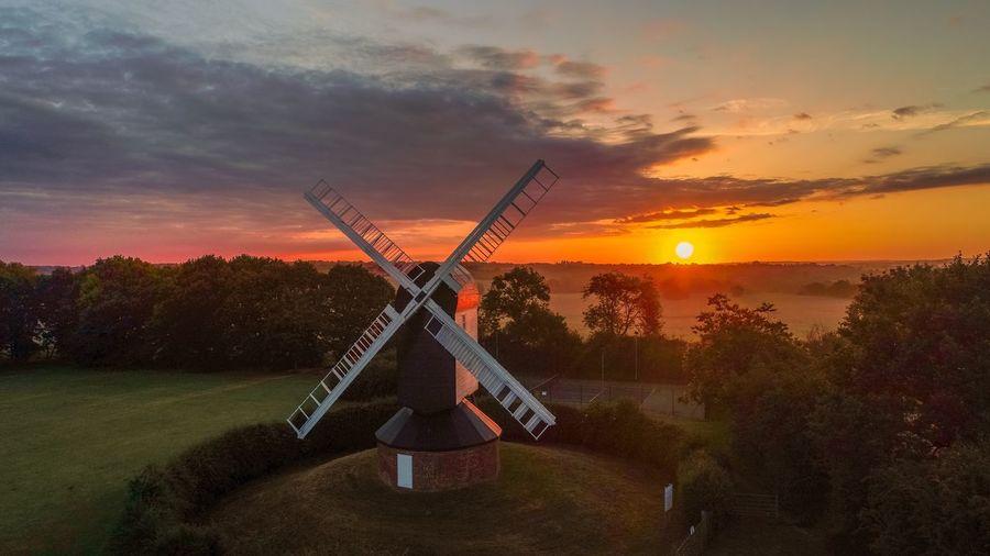 Windmill Golden