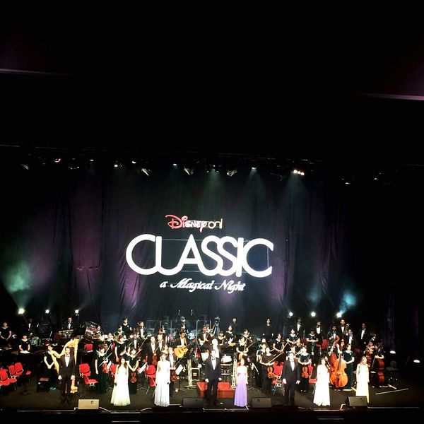 Disney Princess Musical Instruments Lovley  Sweet Cinderella The Little Mermaid <3 Frozen Tangled Snow White Classic