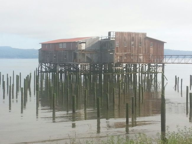Sea Water Stilt House Built Structure Pier Outdoors Architecture Building Exterior Horizon Over Water Environment Astoria, OR Astoria, Oregon Columbia River Northcoastrecovery Tide Water's Edge Fog Beach Tranquil Scene Beauty In Nature Reflection Tranquility Nature No People Awe