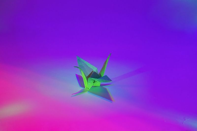 Paper Crane Icecapades Oragami No People Paper Multi Colored Close-up Day Visual Creativity The Still Life Photographer - 2018 EyeEm Awards