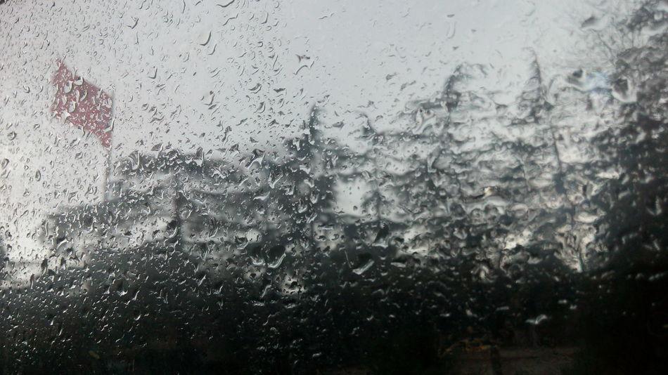 Turkey Bayrak Dalgalansendeşafaklargibieyşanlıhilal Vatan Yağmur Ağaçlar ♥♡♥ Wood Wonderful Good Morning