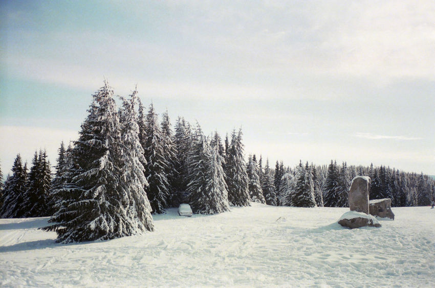 Olympus Mju Ll Beauty In Nature Cold Cold Temperature Field Frozen Landscape Nature No People Outdoors Scenics Snow Tranquil Scene Tranquility Weather Winter