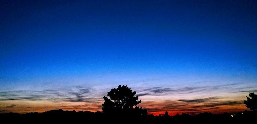 Gute Nacht Welt... Sunset Silhouette Tree No People Scenics Outdoors Sky Blue Beauty In Nature Nature Night The Great Outdoors - 2017 EyeEm Awards Abendstimmung KrefeldUerdingen Landscape Nachtstimmung Lightning Germany Krefeld Deutschland Heimat Uerdingen Cloud - Sky