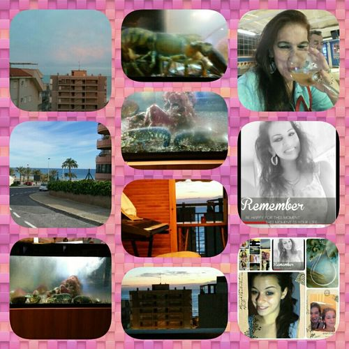 Taking Photos Hello World Hi! Happy New Year 2016 Check This Out A Little Of Everyone & Spain's Views My Da Daughter...cats...I Have A Last Appointment At Munday With A Professor & We'll See.. LOVE PEACE & RESPECT ALL MY FRIENDS!