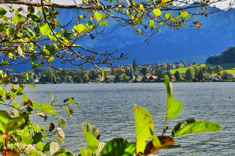 Mountain Lake Mountain View Nature Spreeng See Lake View Mondsee Austria Lake