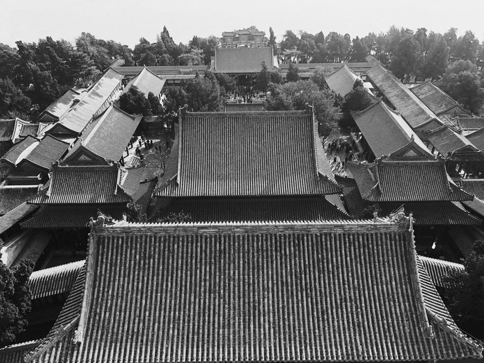 Overlooking The Summer Palace Overlooking Cityscape City The Summer Sky Black And White Monochrome Built Structure Day Tree Architecture Roof Outdoors No People Building Exterior
