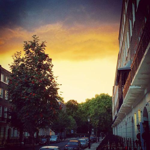 Sunset Bedfordplace Thanethotel