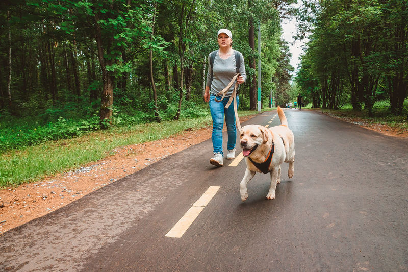 Portrait of woman with dog on road