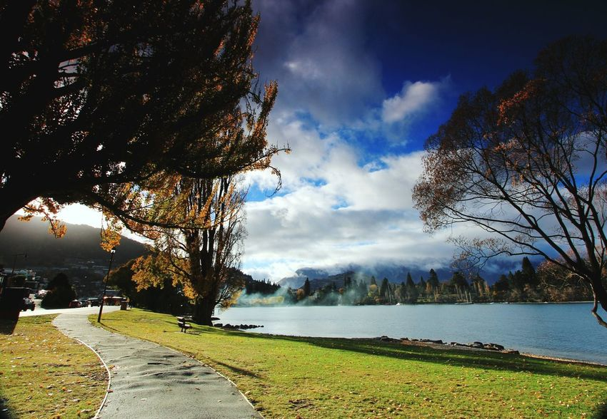 EyeEmNewHere Tree Water Cloud - Sky Sky Outdoors Nature Landscape Scenics No People Day Beauty In Nature Grass Flower autumn Lakefront New Zealand South Island Tourist Attraction  Queenstown Nz Travel Destinations Mountain Range