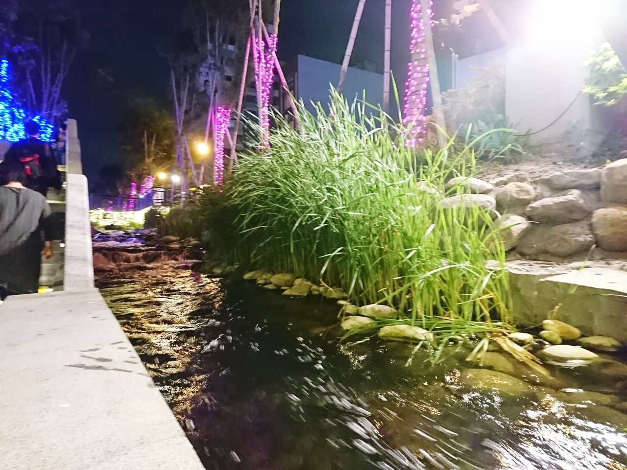 illuminated, water, night, incidental people, nature, plant, architecture, outdoors, lighting equipment, built structure, street, motion, city, decoration, rock, solid, market, building exterior
