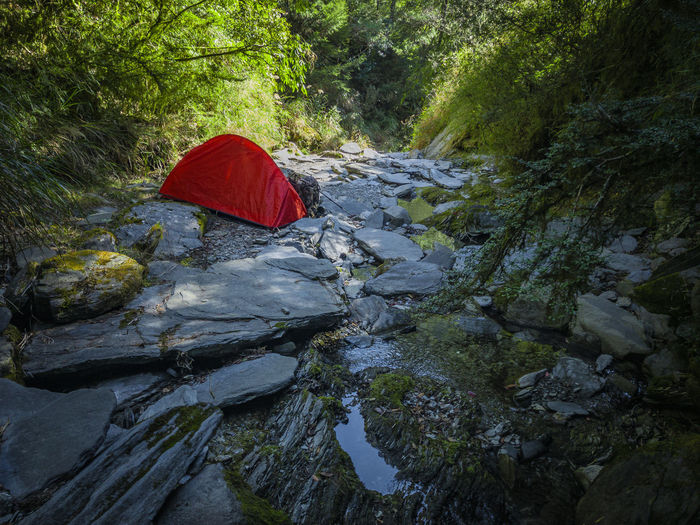 Red umbrella on rock by river in forest