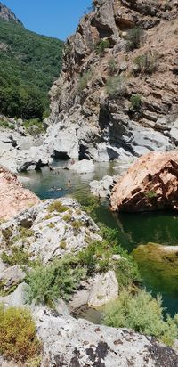 Tree Water Mountain Sunlight Rock - Object Landscape