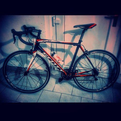 ... neues Spielzeug's, auf das was in die Beine kommt 😀 🚴 Cr1 Scottcr1 Scottbike Rideonscott neverstop bikeonscott bikesscottvision momentofsports scottbikes instapic biker fittingbike roadbike instabike lovecycling