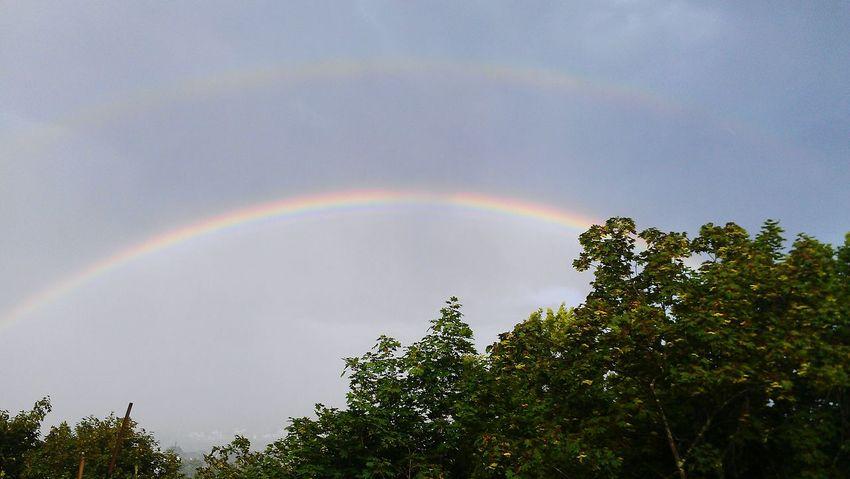 Double Rainbow August 2014
