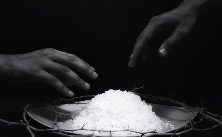 Cropped hands reaching towards rice amidst thorns in plate against black background