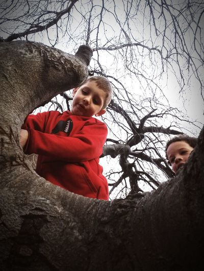 Tree Climbing Spring Time Family❤ EyeEm Nature Lover My Nephews Cousins  Exploring