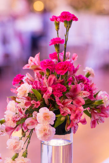 bouquet of flowers Engagement Wedding Flower Boquet Flowering Plant Vulnerability  Fragility Plant Beauty In Nature Freshness Pink Color Close-up Petal Nature Vase Focus On Foreground Flower Head No People Inflorescence Growth Flower Arrangement Decoration Blossom Outdoors Bunch Of Flowers Flower Pot Bouquet
