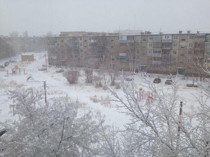 Снегопад ❄️⛄️