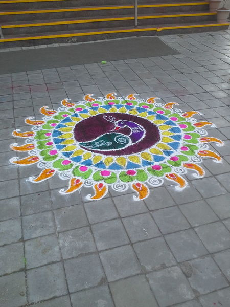 Rangoli on pongal day celebrations. Pongal Multi Colored Celebration Outdoors Street First Eyeem Photo IndianFestivals Onamcelebrations Onam Rangoli RangoliArt Rangoli Design Rangoli In India EyeEmNewHere EyeEmNewInHere