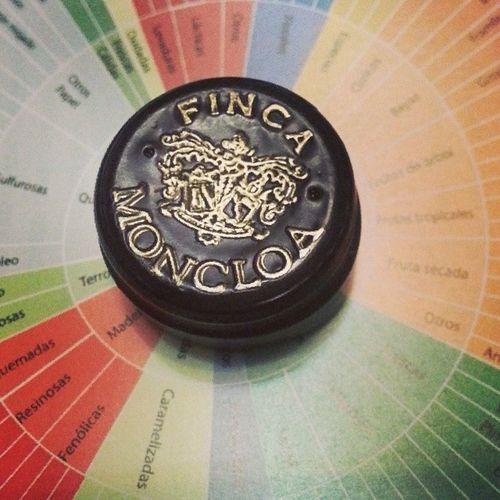 Notasfincamoncloa Catafincamoncloa fase olfativa es Intenso y Elegante . Un Vino revelador en Aromas .