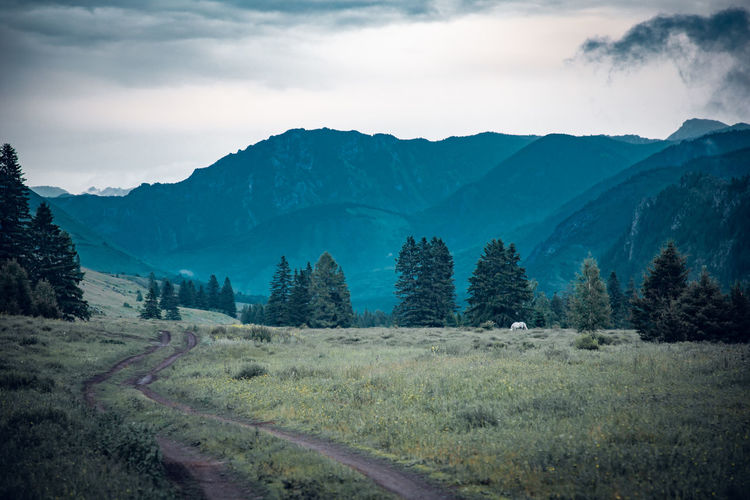 Scenic view of landscape and mountains against sky, altai, russia