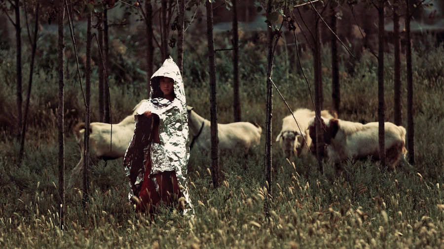 Boy covered with plastic standing by animals at forest