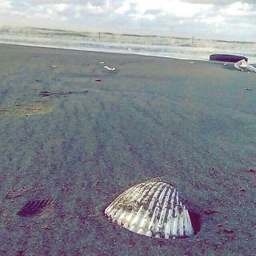 Sand Beach First Eyeem Photo