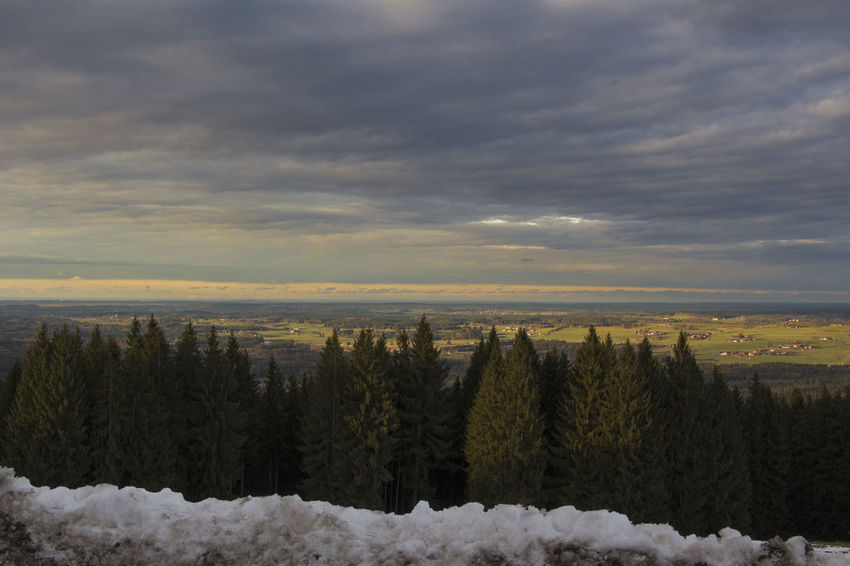 view from Peißenberg Beauty In Nature Cloud - Sky Cold Temperature Day Growth Landscape Nature No People Outdoors Scenics Sky Snow Tranquil Scene Tranquility Tree Weather Winter