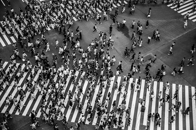 世界一人が交差する場所を見下ろせるところができてる・・・のは知っていたけどやっと行けた。ずっと見てられるくらいたのしいよ。 Crowd Group Of People Large Group Of People Real People High Angle View City Street Lifestyles Women Architecture Men Day Adult Leisure Activity Walking City Life Transportation Built Structure Crowded Outdoors Government