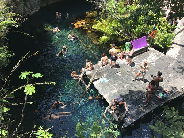 Paradise Cenote Cave Sinkhole Cavern Water Nature Tulum Mexico Top Perspective Nofilter Noedit People Swimming Snorkeling Sunny Breathing Space
