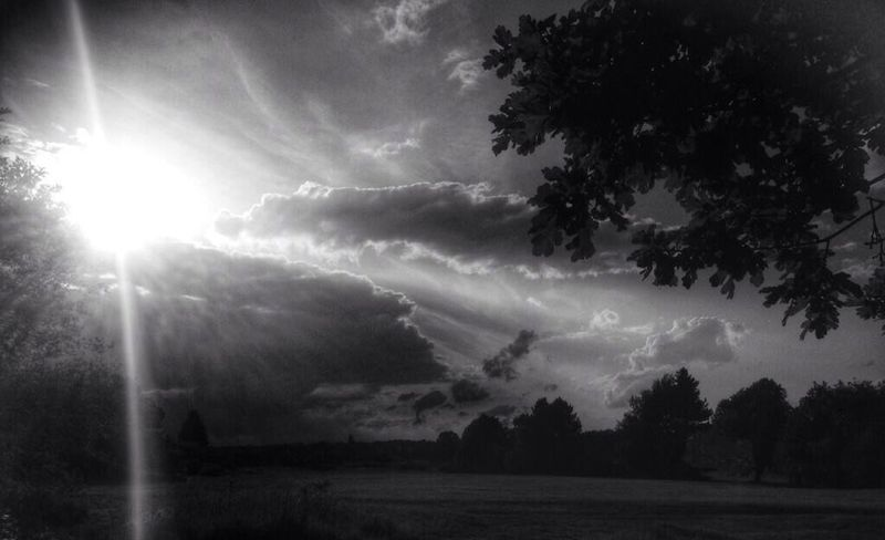 Black & White Clouds And Sky