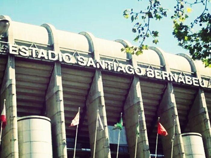 Stadio Estadio
