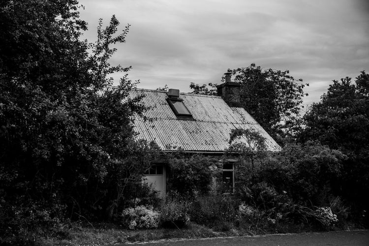 Lomography Neptune Convertible Art Lens System Black And White Blackandwhite Tree Plant Built Structure Architecture Building Exterior Sky Building Growth Nature Cloud - Sky House No People Day Residential District Outdoors Abandoned Roof Land Window Obsolete