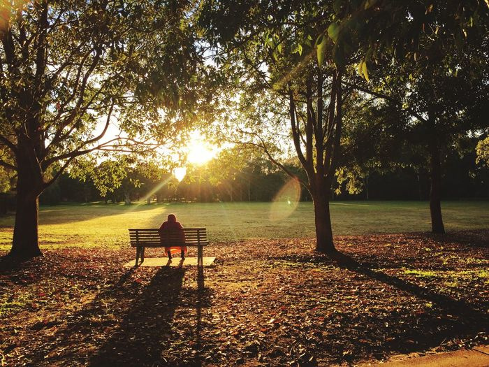 Soaking up.. Nature Sunlight Rear View Beauty In Nature Park - Man Made Space Outdoors Fallen Leaves People Photography Earlymorning  Sunrise