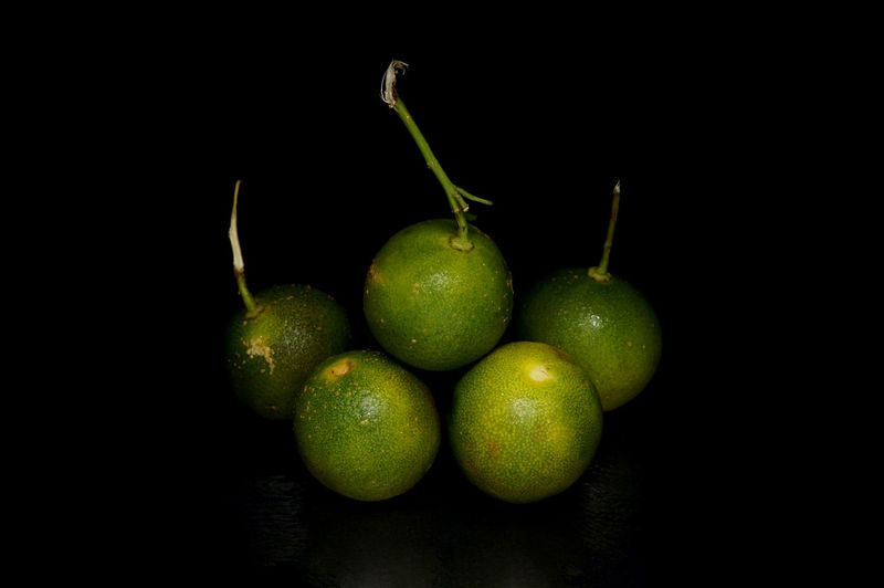 Black Background Calamansi Close Up Lemon Light Box Light Tent Lime Low Key