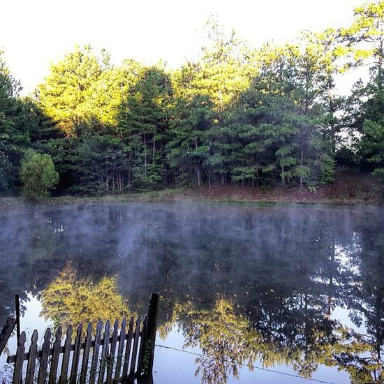 Ahhh mist on the pond this morning. Sure feels like Fall. The air is not humid and its nice and cool. I Love It!!! Early signs of Autumn. Hope Ya'll have a Blessed Day! Mist Pond Coolmorning Readyforfall