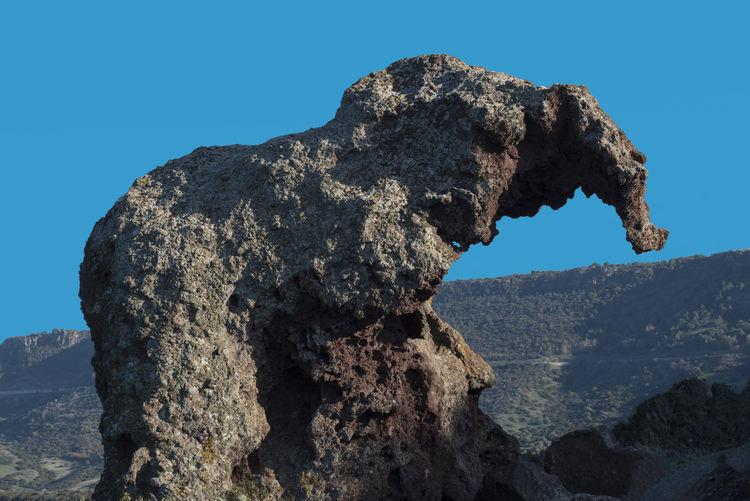 Castelsardo Italia Bluye Sky Cielo Azzurro Elephant Rock Europe Italy Light And Shadows Pareidolia Provincia Di Sassari Roccia Dell'elefante Sardegna Sardinia