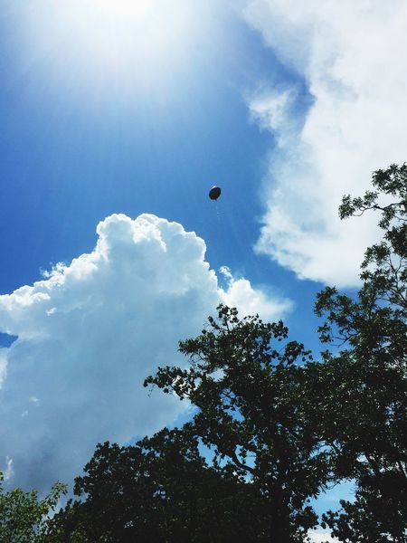 Sky Low Angle View Adventure Tree Cloud - Sky Mid-air Outdoors Day Nature Flying Beauty In Nature No People Sun Sunlight Saber Balloon Balloon Release  Release Miscarriage Awareness Miscarriage Awareness Daughter